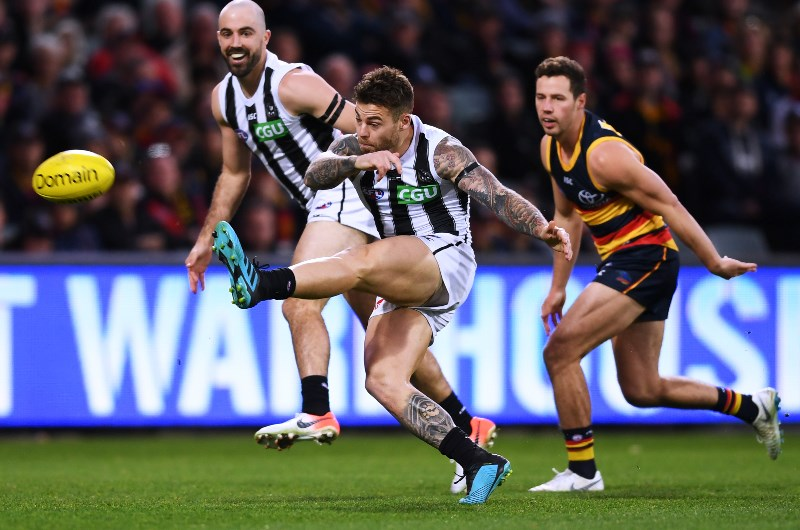 Adelaide Crows Vs Collingwood Betting Tips Predictions Odds Crows Winless Run To Be Extended By Pies