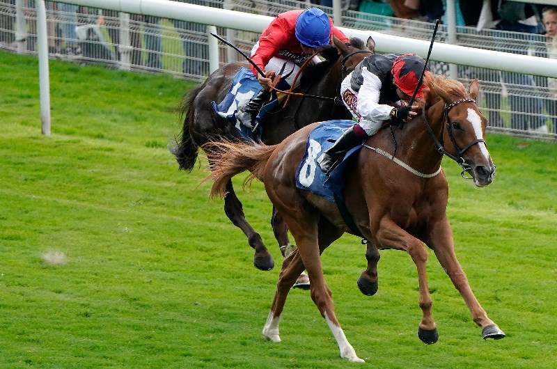 galtres stakes