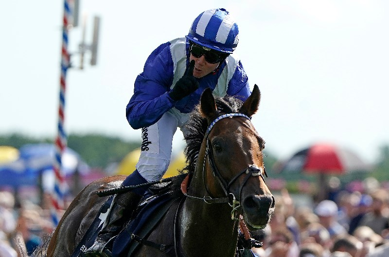 Nunthorpe stakes betting sites betting lines on superbowl