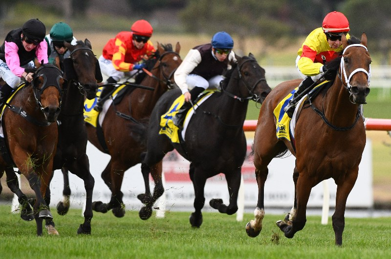 Sandown horse racing australia betting offer bonuses or rewards for having a fixed schedule payout online sports betting