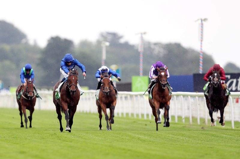 Irish champion stakes 2021 betting websites munster v saracens betting preview