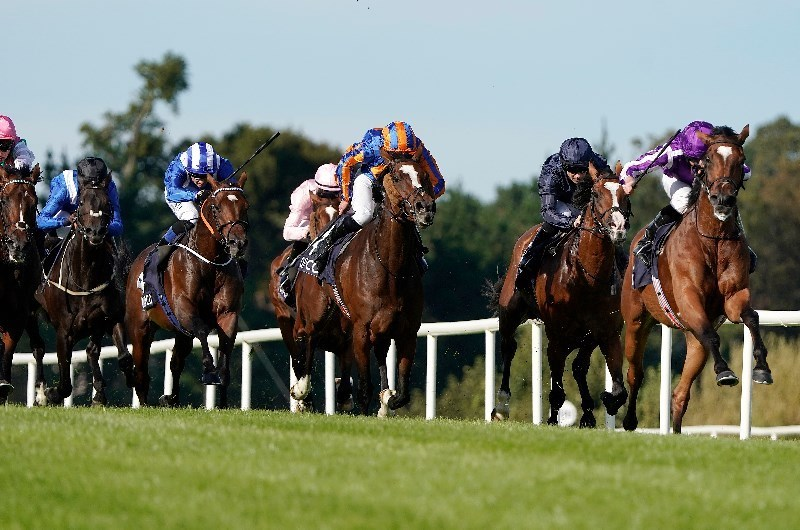 irish champion stakes leopardstown