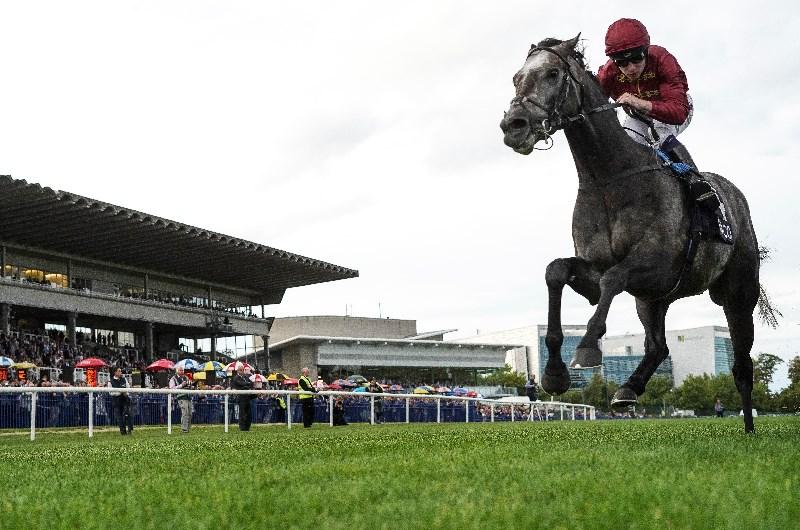 Irish champion stakes 2021 betting websites nadeshot cs go betting
