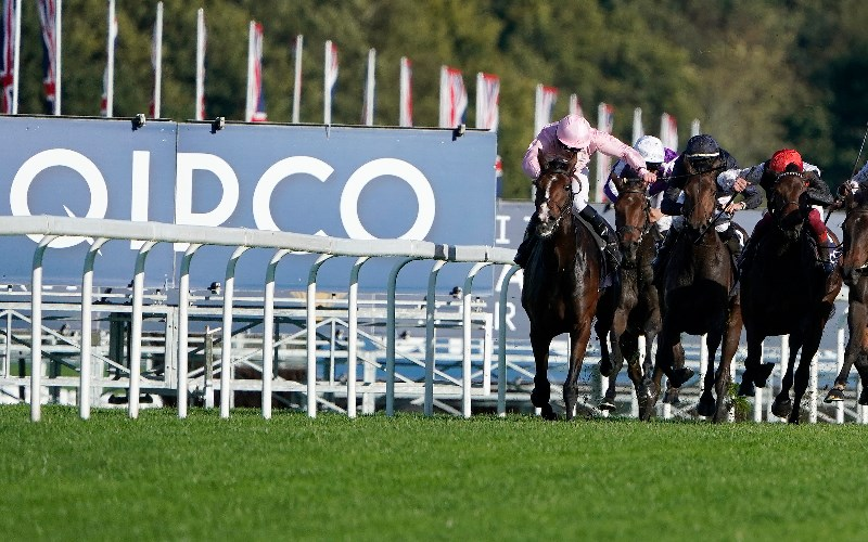 Champion stakes ascot 2021 betting advice gold glove csgo betting websites