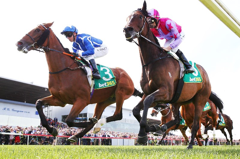 Geelong cup 2021 betting line arsenal v manchester united betting preview