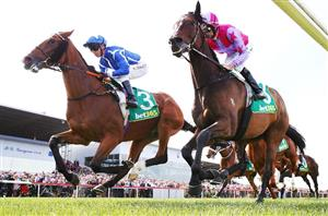 Geelong cup 2021 betting tips binary options brokers 2021 olympics