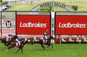 cox plate 2021 betting on sports