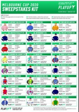 Melbourne Cup Sweepstake