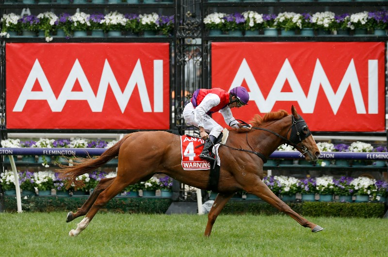 melbourne cup betting odds 2021
