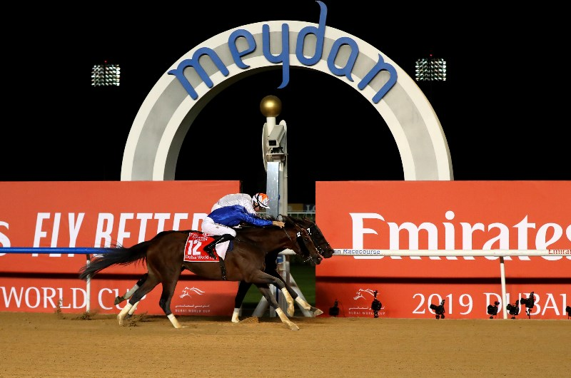Meydan racing betting games is it illegal to bet on games