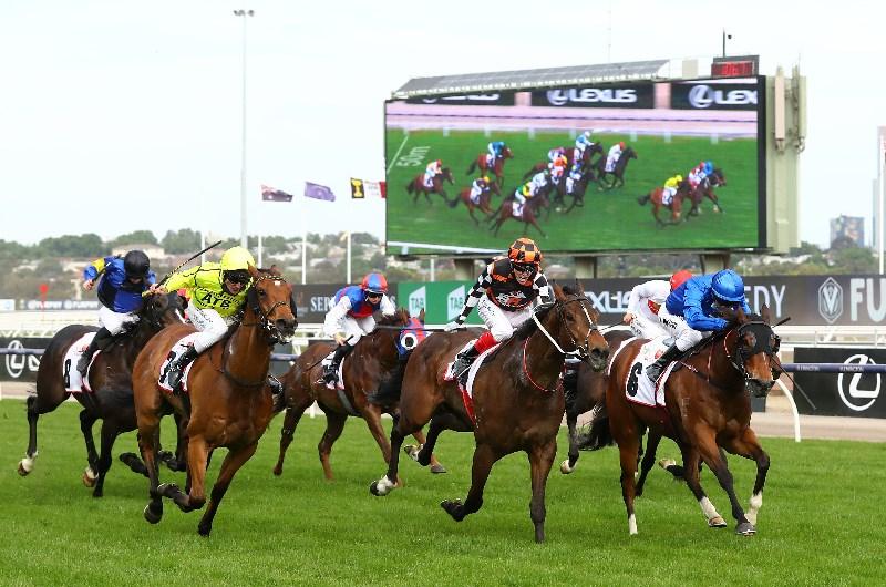 How to bet on horse racing australia jason r/csgobetting