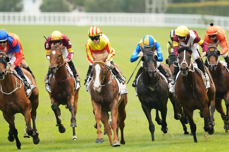 Randwick races sports betting online aiding and abetting lawyer fees