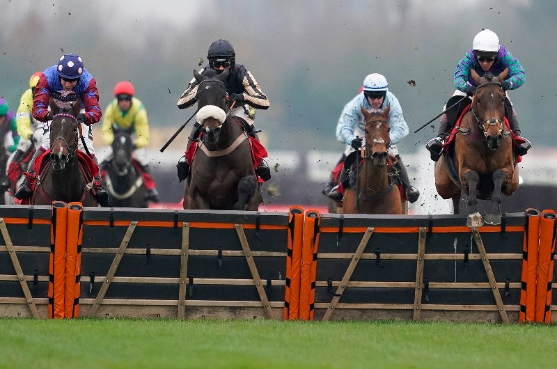 Long walk hurdle betting eddie olczyk horse betting