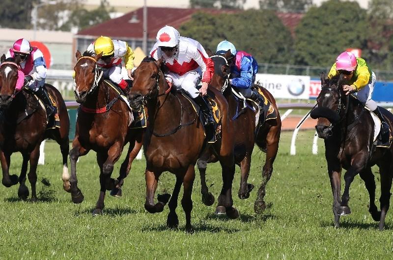 sports betting jobs australia inverell