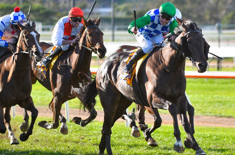 Sports betting jobs australia inverell new markets tax credits unlocking investment potential in the healthcare