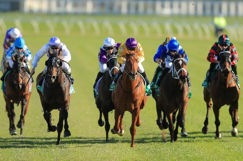 Randwick races sports betting bears cowboys 2021 betting line
