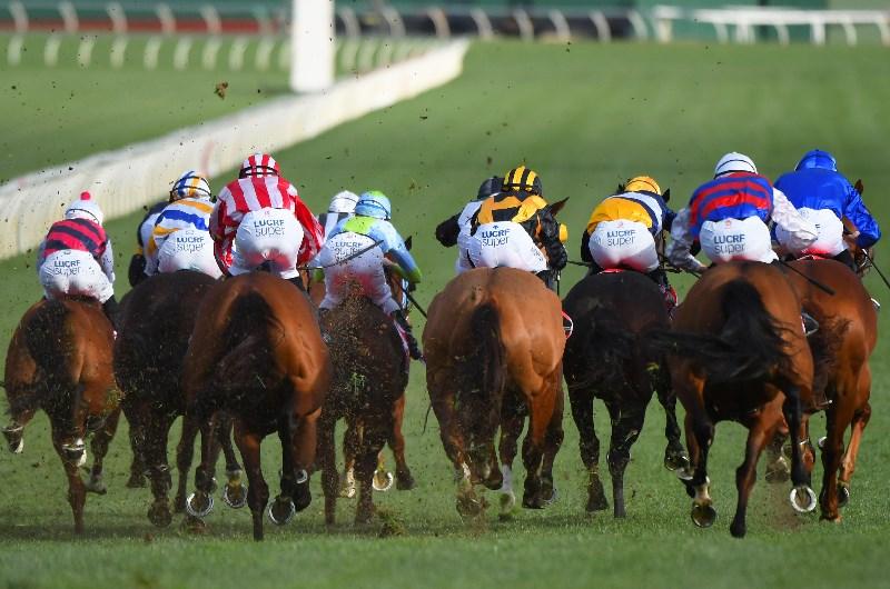 sandown horse racing australia betting