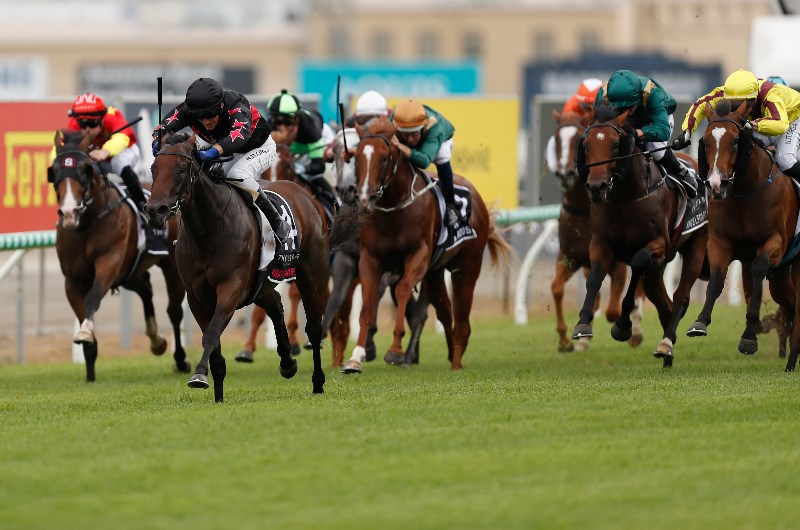 Magic millions race day 2021 betting odds online betting law new york