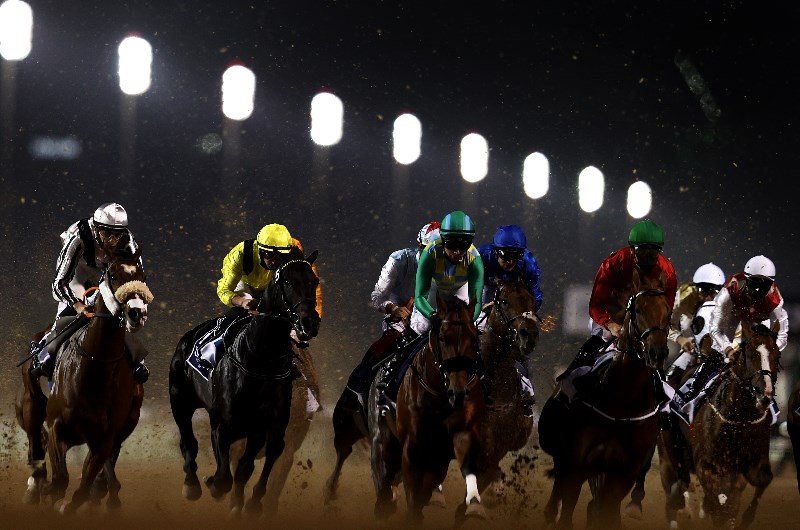 meydan racing betting games