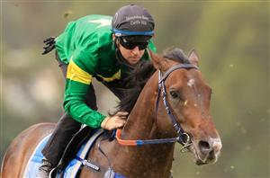 2000 guineas 2021 bettingadvice cox plate 2021 betting websites