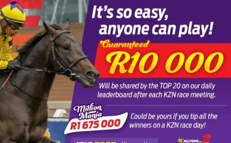 HollywoodBets Punters Challenge Main Image